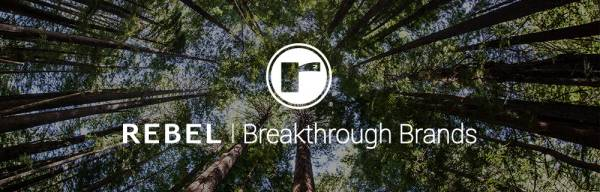 Get Exponential Results with  REBEL Breakthrough Branding